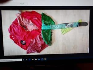 SJ rosa roba Escola